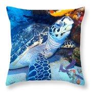 Tucked Away Turtle Throw Pillow
