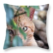 Tucker - The Cat Throw Pillow