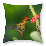 Tufted Coquette Throw Pillow