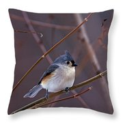 Tufted Titmouse In Winter Throw Pillow