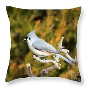 Tufted Titmouse On A Branch Throw Pillow