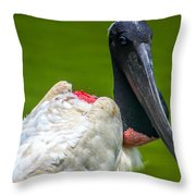 Tuiuiu Throw Pillow