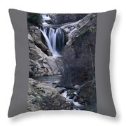Tule River Throw Pillow