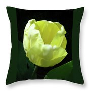 Tulip 0755 Throw Pillow