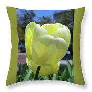 Tulip 0761 Throw Pillow
