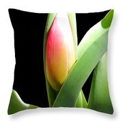 Tulip 1 Throw Pillow
