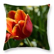 Tulip 11 Throw Pillow