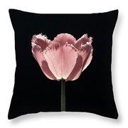 Pale Tulip Throw Pillow