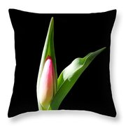 Tulip 3 Throw Pillow