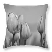 Tulip 37 Throw Pillow