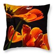 Tulip 38 Throw Pillow