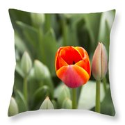 Tulip And Child Throw Pillow