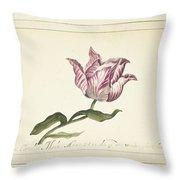 Tulip, Anna Cornelia Moda, 1677 Throw Pillow