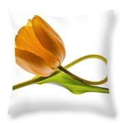 Tulip Art On White Background Throw Pillow