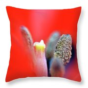 Tulip At Amatzia Forest - 1 Throw Pillow