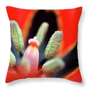 Tulip At Amatzia Forest - 5 Throw Pillow
