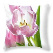 Tulip Bloom 3 Throw Pillow