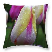 Tulip Close-up 2 Throw Pillow
