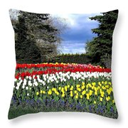 Tulip Country Throw Pillow