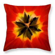 Tulip Explosion Kaleidoscope Throw Pillow