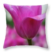 Tulip Festival 1 Throw Pillow by Heather Kenward
