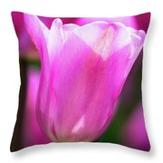 Tulip Festival 2 Throw Pillow by Heather Kenward