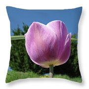Tulip Flower Landscape Art Print Purple Tulips Baslee Throw Pillow