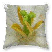 Tulip - Fringed Honeymoon Throw Pillow