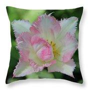 Tulip Galerie Throw Pillow