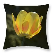 Tulip Glow Throw Pillow