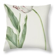 Tulip Grand Roy De France Throw Pillow