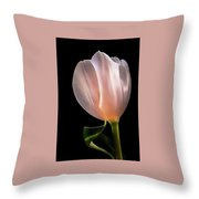 Tulip In Light Throw Pillow