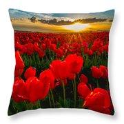 Tulip In Sunset Throw Pillow