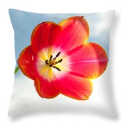 Tulip In The Sky Throw Pillow