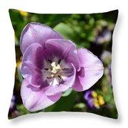 Tulip Lavender Throw Pillow