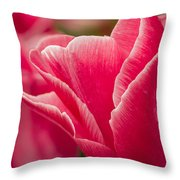 Tulip Layers Throw Pillow
