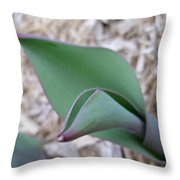 Tulip Leaf Throw Pillow