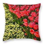 Tulip Line Throw Pillow