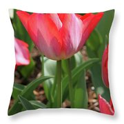 Tulip Magic Throw Pillow