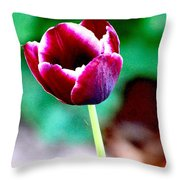 Tulip Me  Throw Pillow