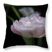 Tulip Mistique Throw Pillow