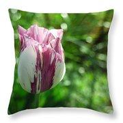 Tulip Morn Throw Pillow
