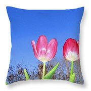 Tulip Panorama Throw Pillow