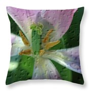 Tulip Passing Beauty Throw Pillow