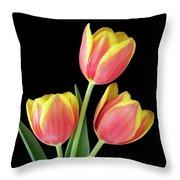 Tulip Passion Throw Pillow