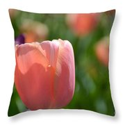 Tulip Pink Throw Pillow