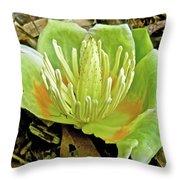 Tulip Poplar Flower - Liriodendron Tulipifera Throw Pillow