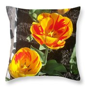 Tulip Red And Orange Throw Pillow