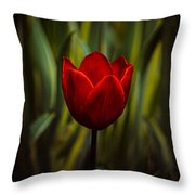 Tulip Throw Pillow by Rod Sterling