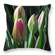 Tulip Series 3 Throw Pillow